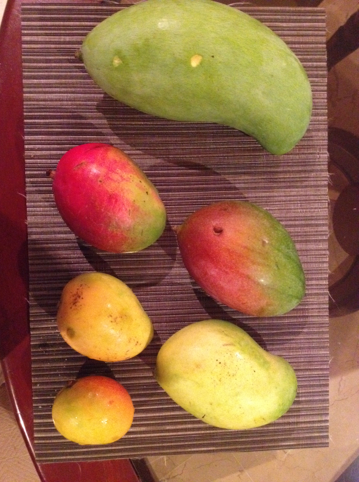 mango salsa mango mania img 6674 mango mania spicy mango salsa mad ...